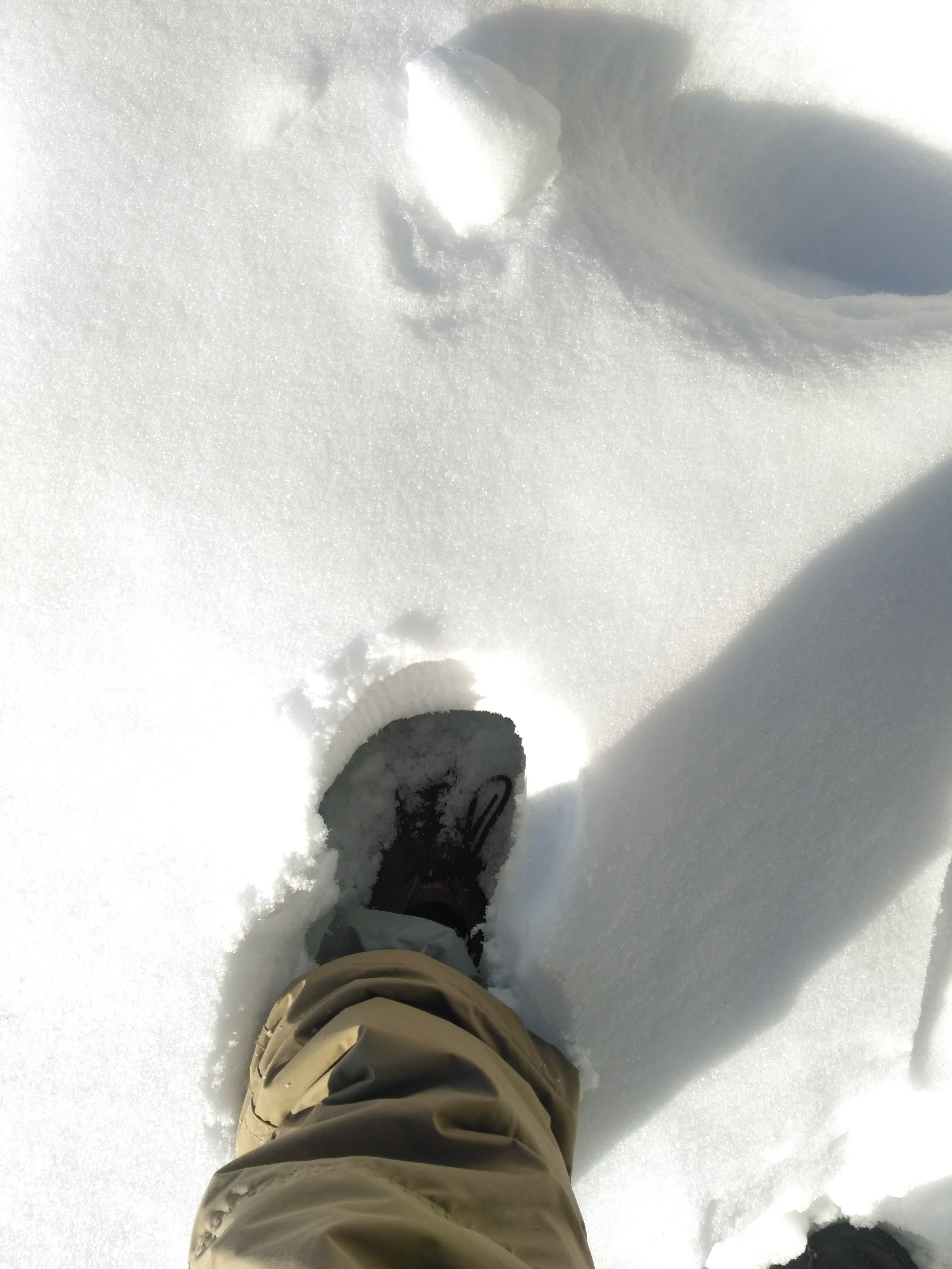 Vivobarefoot Men's Gobi II black in snow